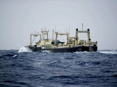 Das Fabrikschiff «Nisshin Maru» (Archivbild) ist Richtung Antarktis ausgelaufen.