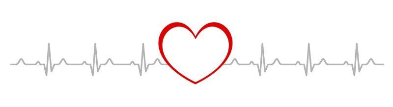 Herz, Kreislauf und Gefäße