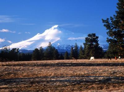 Der schneebedeckte Mount Hood ist der höchste Gipfel Oregons.