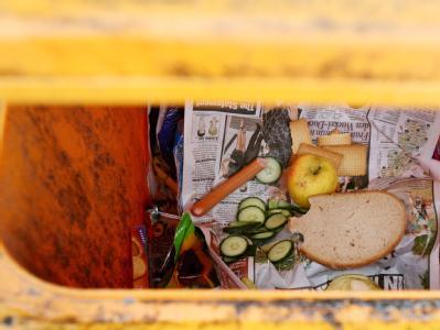 Lebensmittel in einer Mülltonne. Schätzungen zufolge wirft jeder Deutsche jährlich Essen für 310 Euro weg.