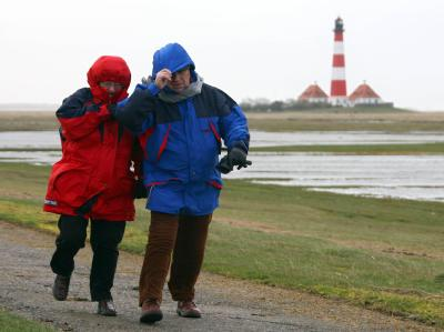 Spaziergänger trotzen auf Eiderstedt in Schleswig-Holstein dem Wind. (Archivbild)
