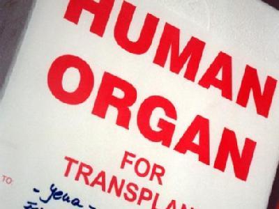 fünf Patienten wurden Herz, Leber, Lunge sowie zwei Nieren eines HIV-Infizierten transplantiert. (Archivbild- und Symbolbild)