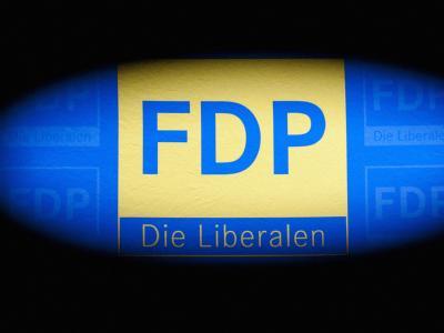Im Mittelpunkt des FDP-Parteitags steht die Verabschiedung eines neuen Grundsatzprogramms. Foto: Robert Schlesinger/Archiv