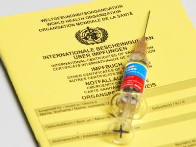 Mehr als die Hälfte der Deutschen will sich nicht gegen die Schweinegrippe impfen lassen.