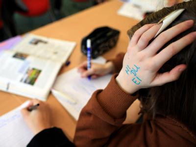 Eine Schülerin an einer Hauptschule Fast eine halbe Millionen 15-Jähriger machte bei der PISA-Studie mit.