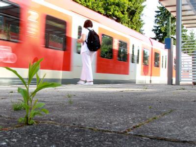 S-Bahn-Zugf�hrer als Zeuge im Brunner-Prozess