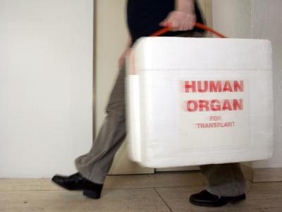 Nach DSO-Angaben warten 12.000 Menschen in Deutschland auf ein Spenderorgan. Foto: Frank May/Archiv