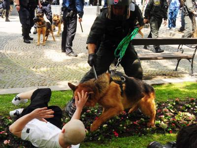 Ein Homosexuellen-Marsch durch die Altstadt von Bratislava wurde abgesagt, weil die Polizei einer Gruppe aggressiver Neonazis nicht Herr wurde.