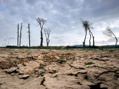 Die Veränderung des Klimas ist an vielen Orten spürbar - wie hier am ausgetrockneten Flussbett des Llobregat im Nordosten Spaniens. Foto: Xavier Bertral
