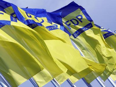 FDP-Flaggen