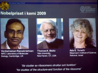 Chemie-Nobelpreis f�r drei Eiwei�forscher