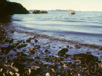 Blick auf einen verseuchten Küstenstreifen in Alaska (Archivfoto vom 31.03.1989).