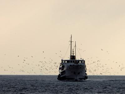 Türkische Fähre auf dem Bosporus. Symbolfoto: Tolga Bozoglu