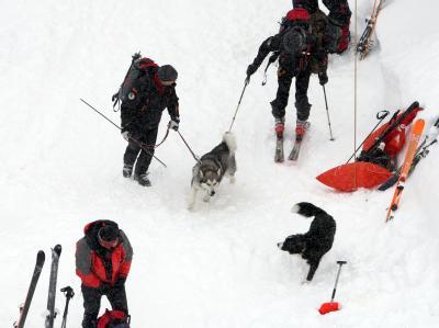 Helfer der Bergwacht suchen auf dem Hochgrat bei Oberstaufen nach Lawinenopfern.