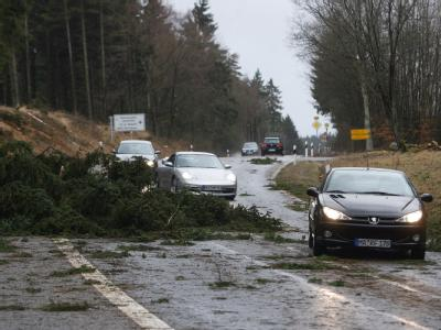 Umgestürzte Bäume blockieren die Bundesstraße 412 in der Eifel in der Nähe des Nürburgrings.
