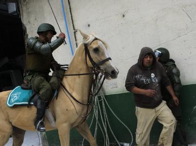 Einsatz zu Pferd