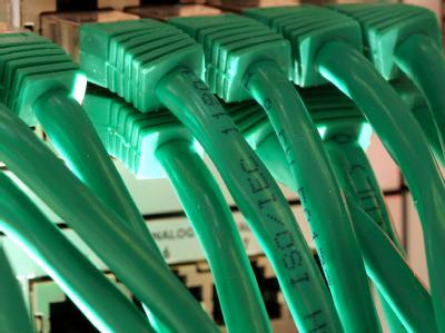 LAN-Kabel an einem Server.