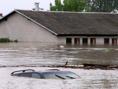 In Polen drohen nach der Flutwelle Seuchen durch Tierkadaver.