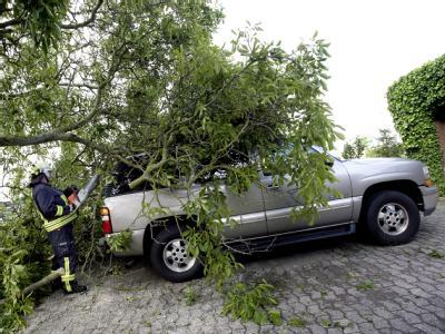 Feuerwehrleute zersägen im ostwestfälischen Hille einen auf ein Auto gestürzten Baum. Eine Windhose hatte schwere Schäden angerichtet.