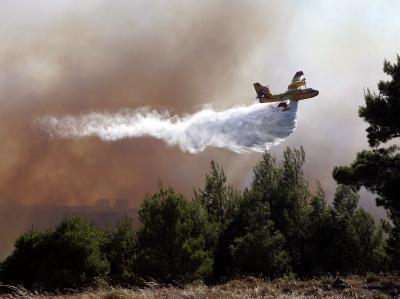 Waldbr�nde in Griechenland