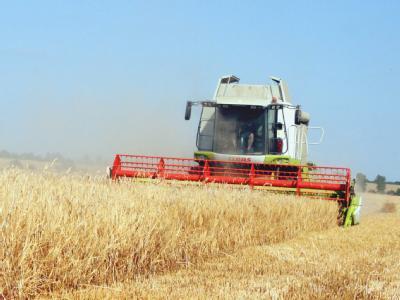 Die verheerenden Waldbrände und die Dürre in Russland könnten nach Einschätzung der deutschen Wirtschaft für Turbulenzen auf den Getreidemärkten sorgen.