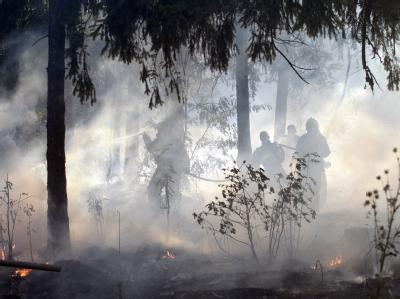 Die russische Feuerwehr beim Kampf gegen die Flammen in der Region Nischni Nowgorod.