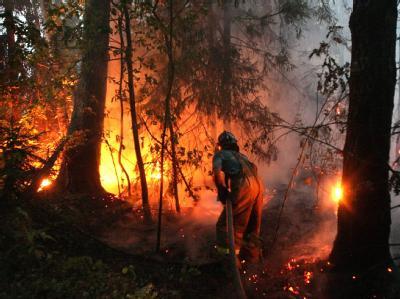 Hunderttausende Helfer versuchen, die verheerenden Waldbrände in Russland einzudämmen.