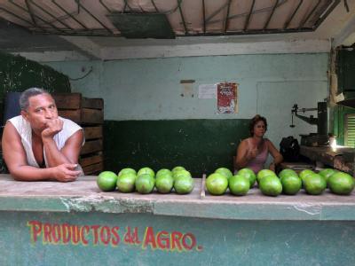 Obstverkäufer im Staatsdienst von Kuba - auch er muss um seinen Job fürchten.