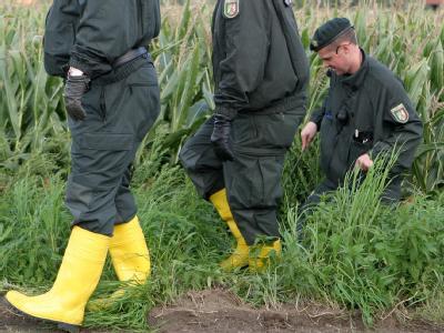Polizisten suchen an einem Maisfeld in der Nähe von Grefrath nach dem vermissten Mirco.