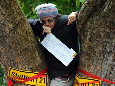 Eine Demonstrantin sitzt im Schlossgarten in Stuttgart auf einem Baum.