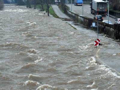 Hochwasser Dreisam
