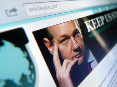 Nach der Festnahme von Wikileaks-Gründer Julian Assange hatten Internet-Aktivisten in den vergangenen Tagen Websites von Unternehmen lahmgelegt,.