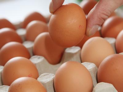 Hühnereier. Nach Dioxin-Funden in Futtermitteln sperrt Niedersachsen vorsorglich rund 1000 landwirtschaftliche Betriebe.