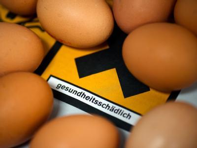 Gefahrenquelle Ei