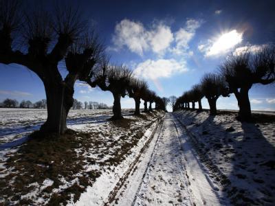 Ungewöhnlich kalt war es hierzulande nur im Dezember, laut Wetterdienst der kälteste seit 1969.