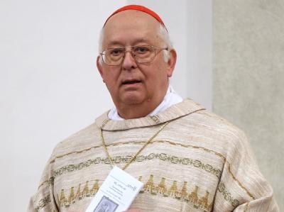 Der Berliner Erzbischof Kardinal Georg Sterzinsky Anfang Februar 2009 im Hamburger Mariendom