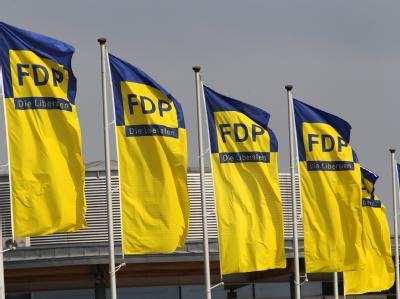 FDP-Fahnen vor der HanseMesse in Rostock. In der Stadt an der Ostsee will die Partei ihren neuen Kurs festlegen.