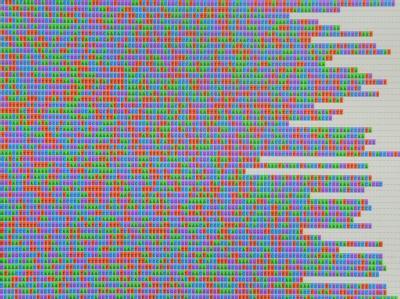 Ein Auszug des genetischen Codes (Genom) des EHEC-Erregers O104 .