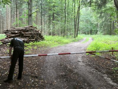 In einem Wald in Niedersachsen haben drei Teenager Selbstmord begangen.