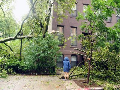 Sturmschäden in New York