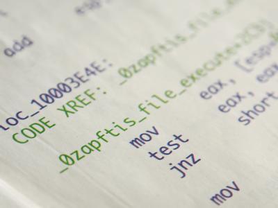 Teile eines Computer-Codes einer Spionagesoftware, der in der Frankfurter Allgemeinen Sonntagszeitung abgedruckt wurde. Nach Vorwürfen des Chaos Computer Clubs haben staatliche Behörden eine illegale «Spionagesoftware» eingesetzt. Foto: Wolfram Steinberg