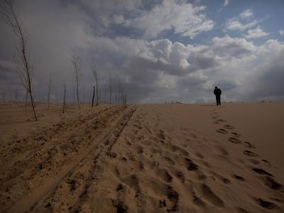 Wüstenbildung in Kulun Qi in der inneren Mongolei. Vom 28.11.2011- 09.12.2011 findet der UN-Klimagipfel im südafrikanischen Durban statt. Foto: How Hwee Young