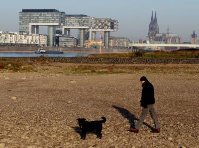 Wüste statt Wasser: Der ausgetrocknete Rhein in Köln. Foto: Oliver Berg