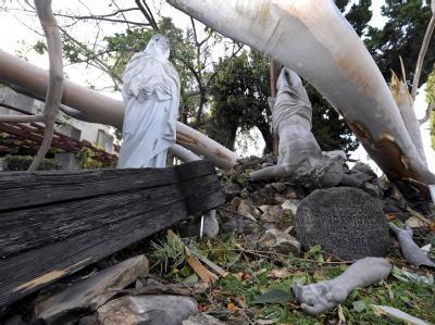 Heftige Böen: Der Sturm zerriss hunderte Stromleitungen, vielerorts wurden Bäume entwurzelt. Foto: Paul Buck