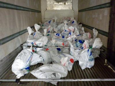 5,2 Tonnen gestohlenes Eis vom chilenischen Gletscher Jorge Montt wurde in diesem Lastwagen entdeckt. Foto: Chilean General Prosecutor's Aysen Office