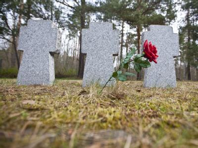 Nach dem Fund einer Babyleiche in der Nähe einer Kriegsgräberstätte im nordsächsischen Elsterheide sind bei der Polizei erste Hinweise eingegangen. Foto: Oliver Killig