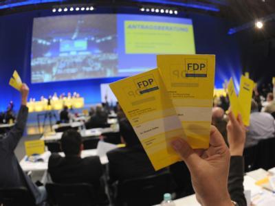 Die Delegierten haben bei ihrem zweitägigen Parteitag über das Grundsatzprogramm der Liberalen beraten. Foto: Patrick Seeger