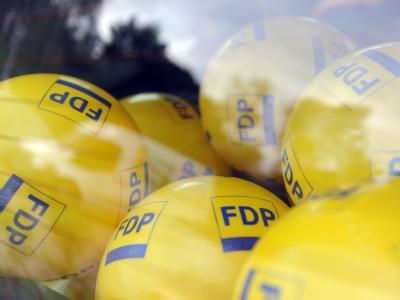 Auch der Wahlerfolg in Schleswig-Holstein kann die FDP nicht aus ihrem Tief ziehen. Foto: Caroline Seidel