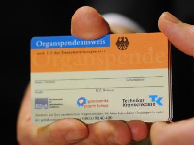 Das Transplantationsgesetz soll die Krankenkassen verpflichten, allen Versicherten über 16 Jahren Informationsmaterial und einen Spendeausweis zu schicken. Foto: Hannibal/Archiv
