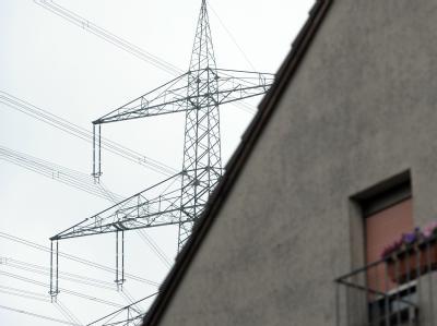 Die Netzbetreiber haben die notwendigen Investitionen bei der Vorstellung der Ausbaupläne für Stromleitungen auf rund 20 Milliarden Euro beziffert. Foto: Caroline Seidel